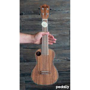 Amahi concert size koa ukulele from Pedally