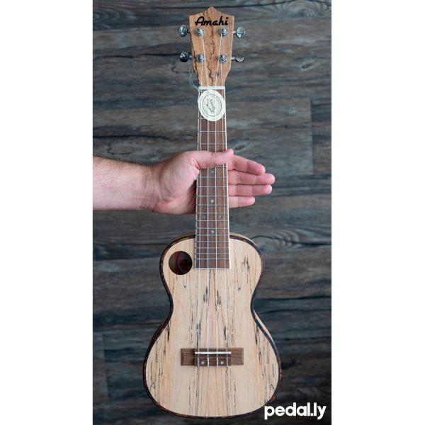 Amahi concert size spalted maple ukulele from Pedally